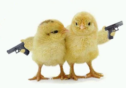 chicks-with-guns
